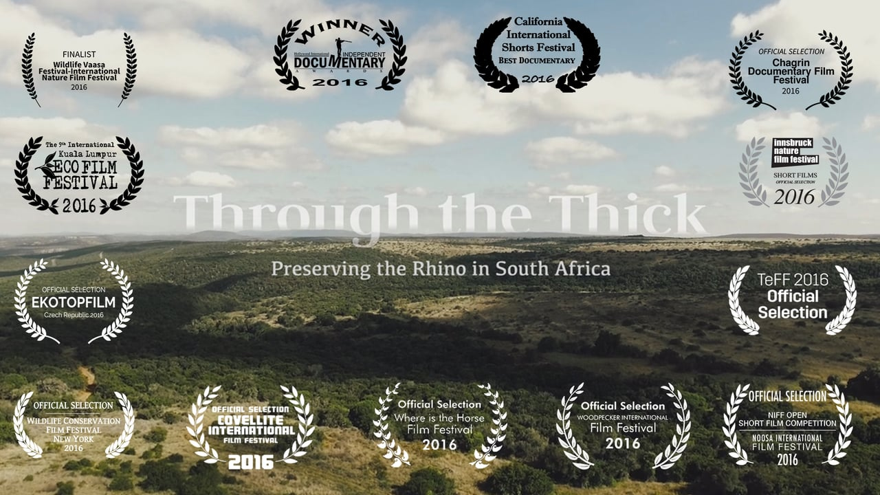 Through the Thick – Preserving the Rhino in South Africa